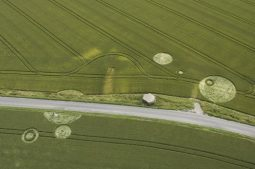 Horton,  Wiltshire | 3rd July 2005 | Wheat