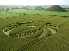 Silbury Hill, Wiltshire | 9th July 2005 | Wheat L