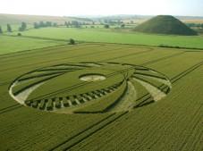 Silbury Hill, Wiltshire | 9th July 2005 | Wheat L