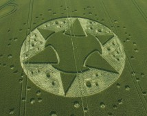 Lane End Down, Hampshire | 10th July 2005 | Wheat L