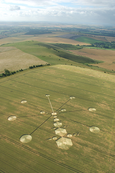 Milk Hill, Wiltshire | 17th July 2005 | Wheat L2