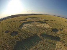 Milk Hill, Wiltshire | 17th July 2005 | Wheat P