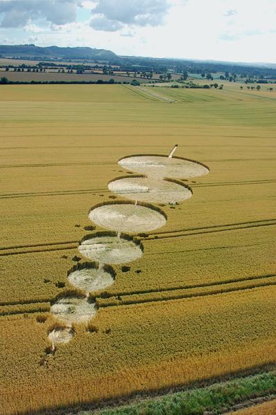 East Field Alton Barnes, Wiltshire | 18th July 2005 | Wheat L