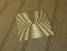 Aldbourne (1),  Wiltshire | 24th July 2005 | Wheat OH