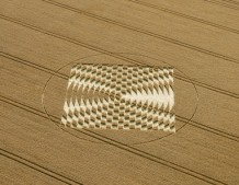 Aldbourne (1), Wiltshire | 24th July 2005 | Wheat L
