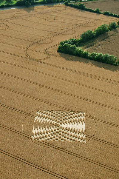 Aldbourne (1), Wiltshire | 24th July 2005 | Wheat L