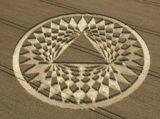Aldbourne (2), Wiltshire | 24th July 2005 | Wheat
