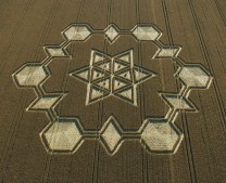 Avebury Henge, Wiltshire | 24th July 2005 | Wheat OH