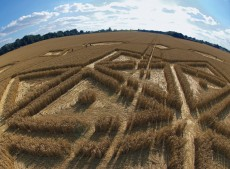Avebury Henge, Wiltshire | 24th July 2005 | Wheat P