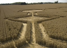 Avebury Henge, Wiltshire | 24th July 2005 | Wheat P2