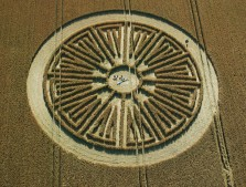 East Kennett, Wiltshire | 24th July 2005 | Wheat
