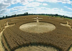 Avebury Manor, Wiltshire | 27th July 2005 | Wheat P