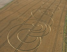 Avebury Avenue,  Wiltshire | 29th July 2005 | Wheat