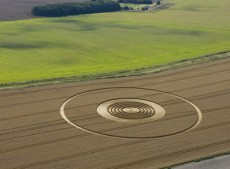 The Ridgeway Avebury, Wiltshire | 31st July 2005 | Wheat L