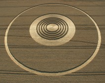 The Ridgeway Avebury, Wiltshire | 31st July 2005 | Wheat OH