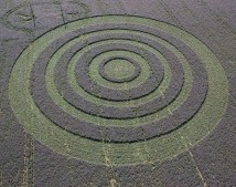 Collingbourne Kingston, Wiltshire | 3rd August 2005 | Borage OH