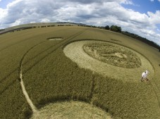 Marden (1), Wiltshire | 9th August 2005 | Wheat P2