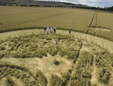 Marden (1), Wiltshire | 9th August 2005 | Wheat P4