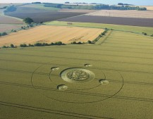 Marden (1), Wiltshire | 9th August 2005 | Wheat L