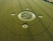 Marden (1), Wiltshire | 9th August 2005 | Wheat OH2