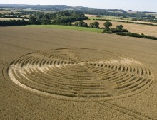 Shalbourne, Wiltshire | 9th August 2005 | Wheat L2