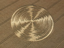 Shalbourne, Wiltshire | 9th August 2005 | Wheat OH