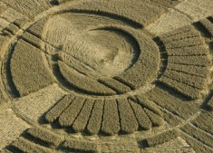Wayland's Smithy, Oxfordshire | 9th August 2005 | Wheat CL