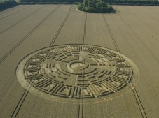 Wayland's Smithy, Oxfordshire | 9th August 2005 | Wheat L2