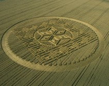 Woolstone Hill, Oxfordshire | 13th August 2005 | Wheat | L