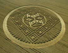Woolstone Hill, Oxfordshire| 13th August 2005 | Wheat | OH2