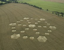 Cherhill, Wiltshire | 21st August 2005 | Wheat L2