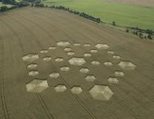 Cherhill, Wiltshire | 21st August 2005 | Wheat L2