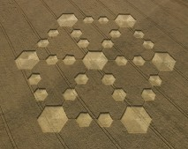 Cherhill, Wiltshire | 21st August 2005 | Wheat OH