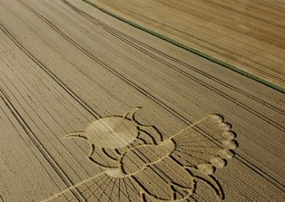 East Field Alton Barnes, Wiltshire | 21st August 2005 | Wheat L