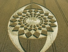 Marden (2), Wiltshire | 21st August 2005 | Wheat L