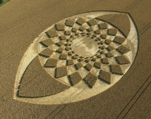 Marden (2), Wiltshire | 21st August 2005 | Wheat OH