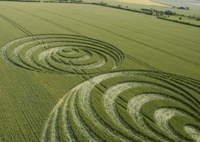 Windmill Hill, Wiltshire| 30th June 2006 | Wheat CL