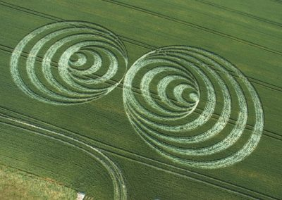 Windmill Hill, Wiltshire | 30th June 2006 | Wheat OH