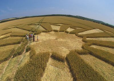 Wayland's Smithy, Oxfordshire | 8th July 2006 | Wheat P