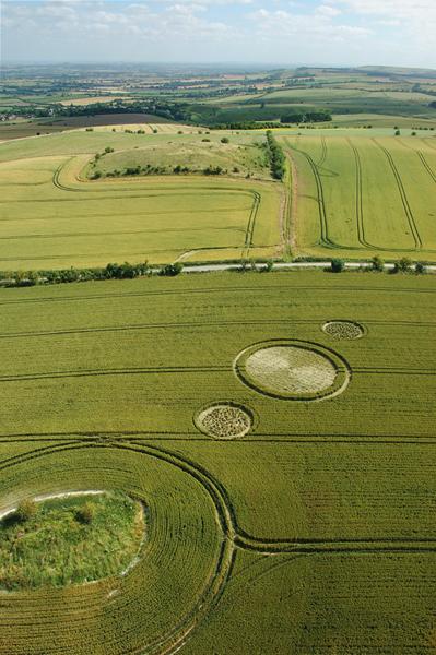 Charlbury Hill, Oxfordshire | 9th July 2006 | Wheat L