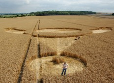 East Field Alton Barnes, Wiltshire   28th July 2006   Wheat P
