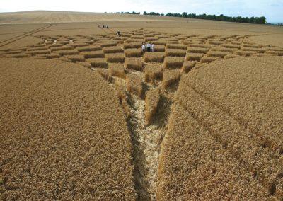 Blowingstone Hill Nr Kingston Lisle, Oxfordshire | 5th August 2006 | Wheat P2