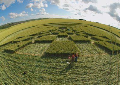 West Kennett Longbarrow, Wiltshire | 28th June 2007 | Wheat P