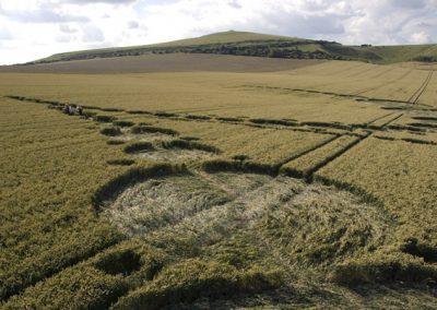 East Field Alton Barnes, Wiltshire | 7th July 2007 | Wheat P2