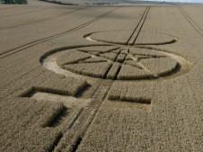 West Kennett Longbarrow, Wiltshire | 25th July 2007 | Wheat LOW