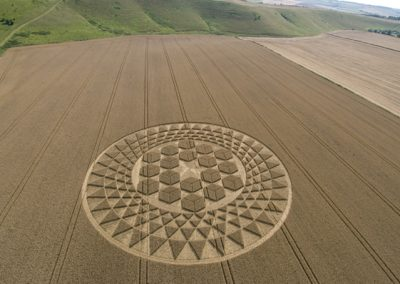 Sugar Hill Aldbourne, Wiltshire | 1st August 2007 | Wheat L2