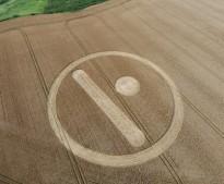 Stanton St Bernard, Wiltshire | 12th August 2007 | Wheat