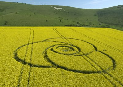 Milk Hill, Wiltshire | 4th May 2008 | Oilseed Rape L