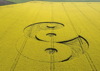 Avebury Ave, Wiltshire | 8th May 2008 | Oilseed Rape L