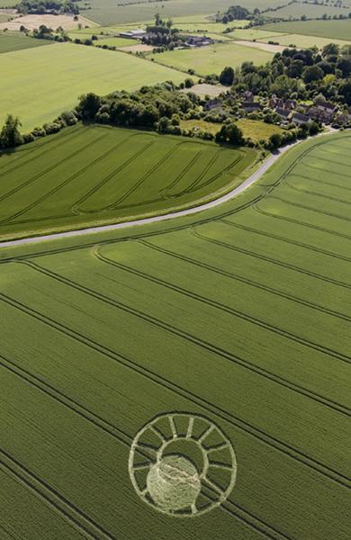 Winterbourne Bassett, Wiltshire | 18th June 2008 | Wheat